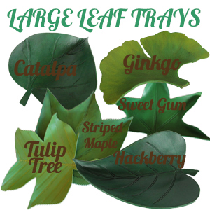 Leaf Trays